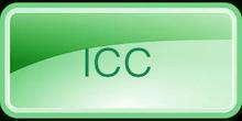 International Corporate Coaching program